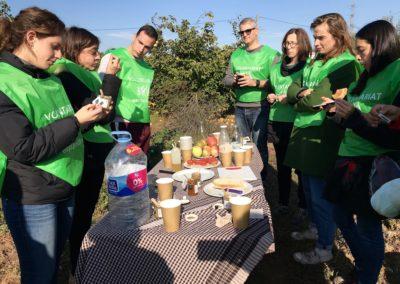 Fruita lletja per a gent bonica. Voluntariat Corporatiu per a Turisme de Barcelona